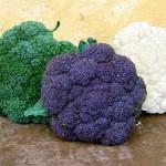 Una dieta saludable: 4 alimentos que debes evitar si